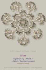 10-Silber-7er