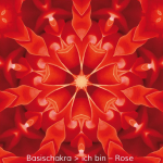 01-dia-rose