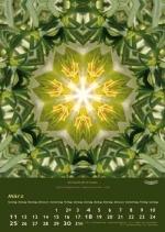 imagami-Kalender-2018-04