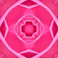ROSE 2 > 4-strahlig