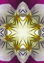 LichtFarbe-03