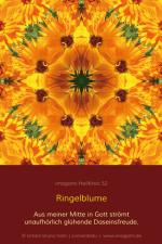 HeilKreis-fbg0052