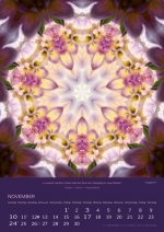 imagami-Kalender-2019-11