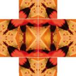 Schmetter1.3